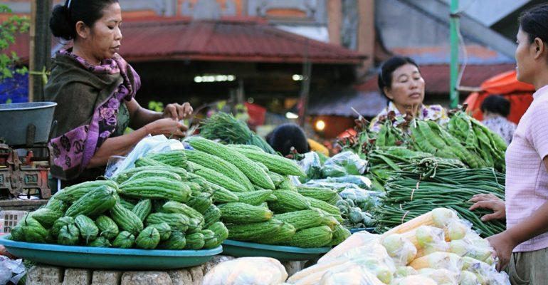 Ayons conscience des bienfaits des légumes verts